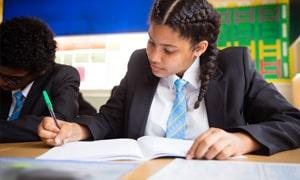 Purpose of Senior Secondary School in India